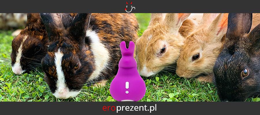 Wibratory króliczki a stymulatory łechtaczki