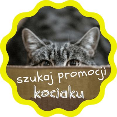 Jak odnaleźć się w wielu promocjach sklepu erotycznego eroprezent.pl